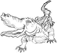 DESSIN-DJAMIL-Crocodile